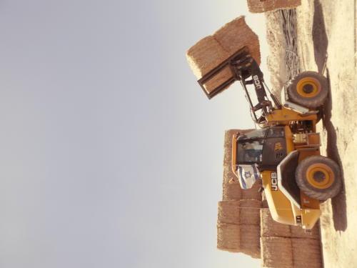 חקלאות בנגב