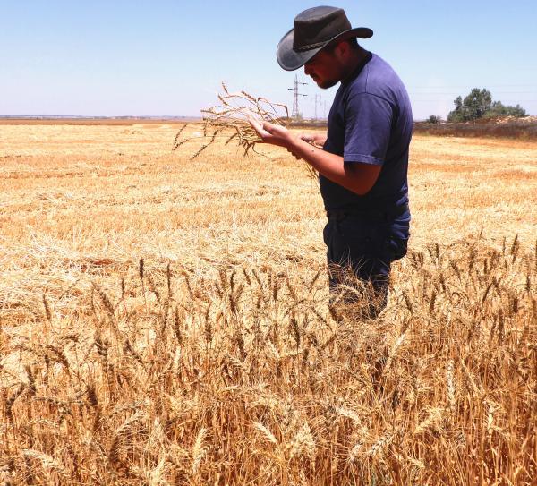 עדויות אישיות - סרט על חקלאות, על חקלאים ועל אהבת האדמה