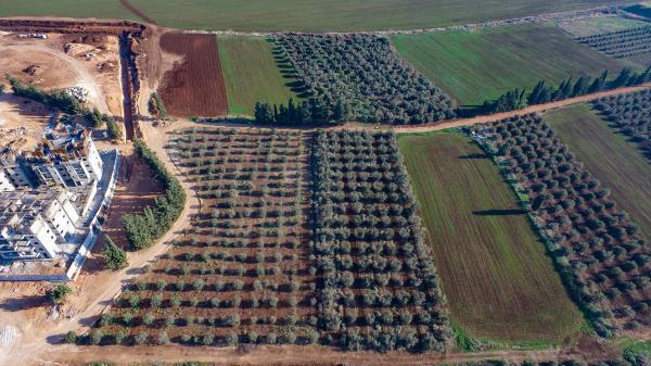 הַתֵּר אֲגֻדּוֹת מוֹטָה, וְשַׁלַּח רְצוּצִים חָפְשִׁים - עיקרי הנושאים שהעסיקו את המגזר הכפרי בשנה היוצאת